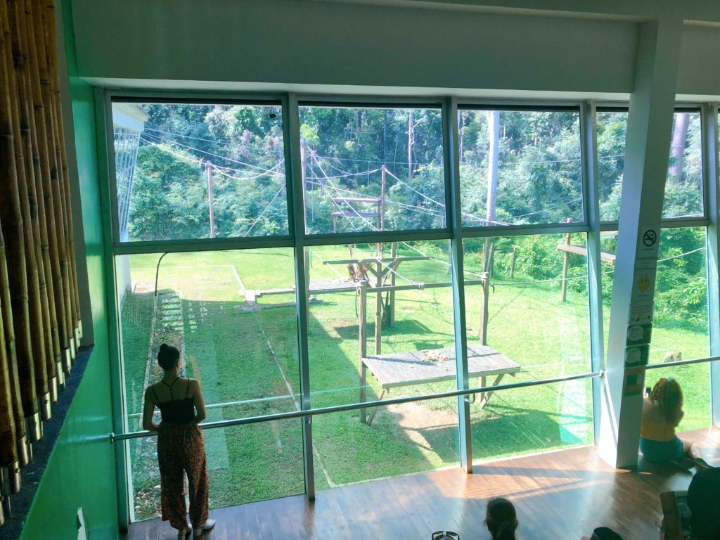 セピロックオランウータン保護区の子どもオランウータン訓練場所