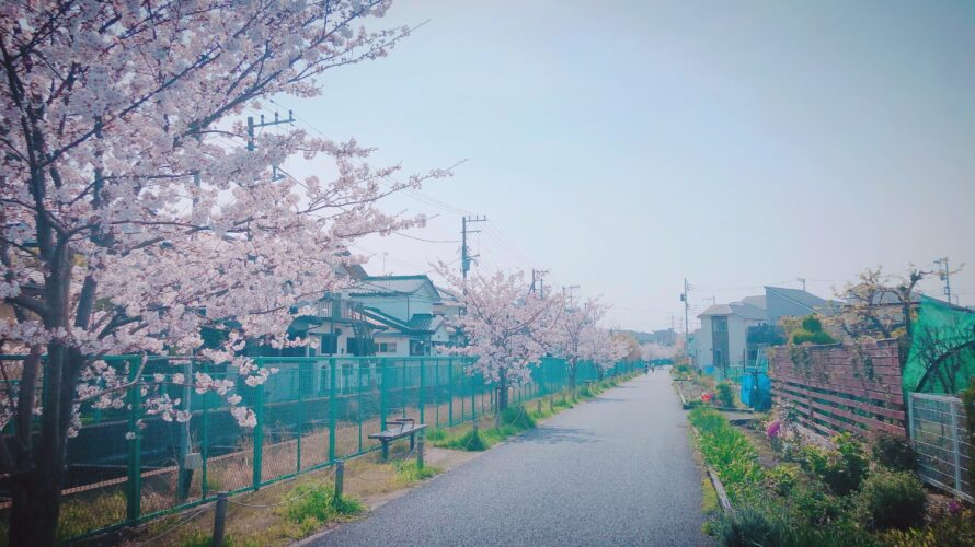 ドラマ「桜の塔(テレビ朝日)」のロケ地・撮影場所まとめ